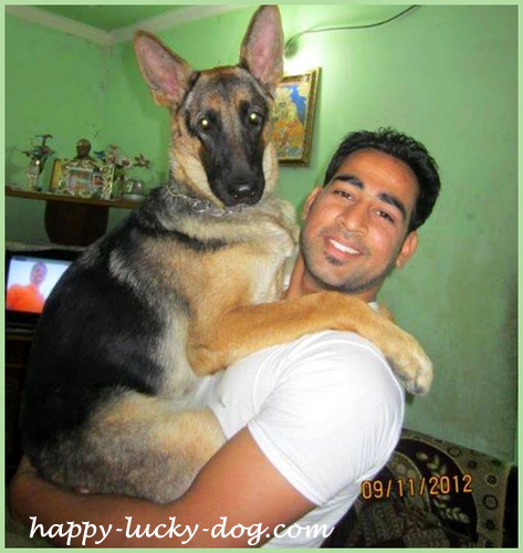 Funny dog photos, in daddy's arms
