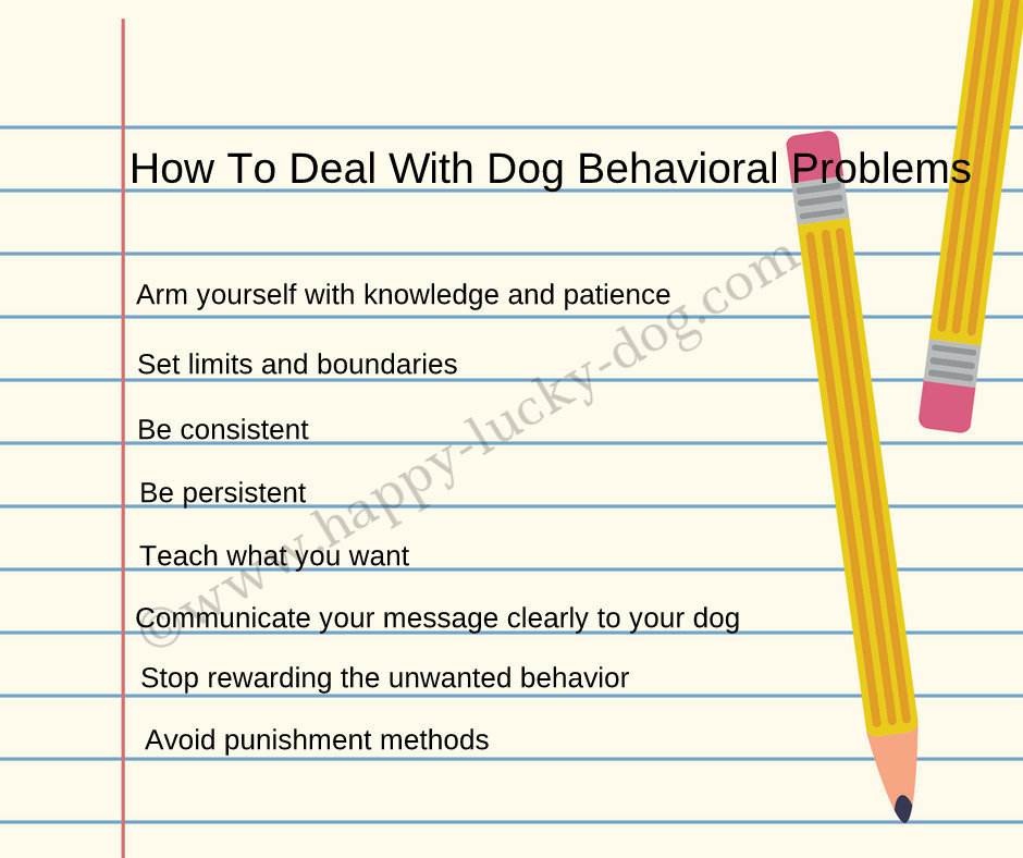 How to deal with dog behavioral problems