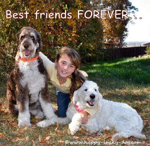 Pretty young girl with her two dogs.