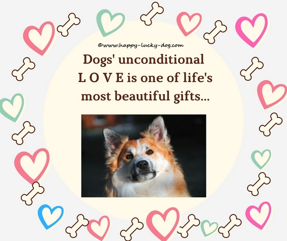 Dogs love quote.