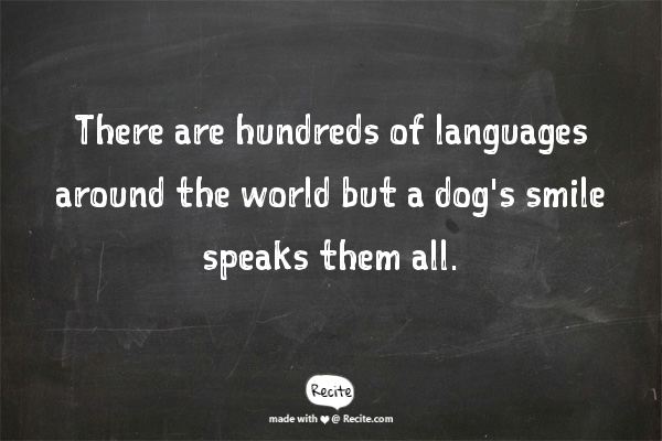 Inspiring quotation about dogs