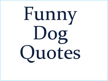 Funny Dog Quotes Time For A Break