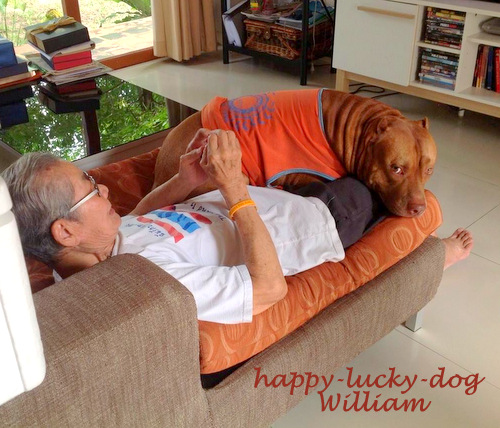 Pitbull photos, William with his grandpa