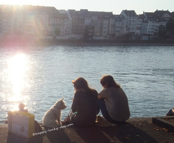 Two friends sitting by the river with the company of their  dog.