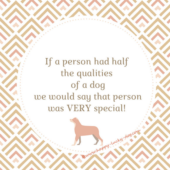 Quotations about how special creatures dogs are